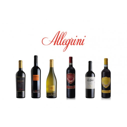 allegrini winery